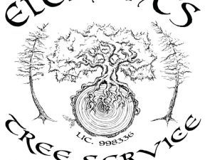 Elements Tree Service