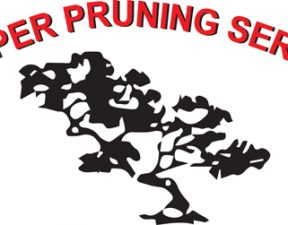 Proper Pruning Service